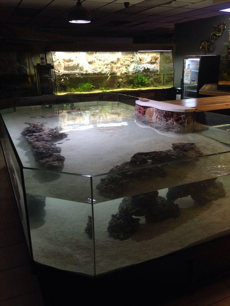 Stingray / Amazon Tank with sitting Bar at Petorama Mansfield TX by DAS Aquariums