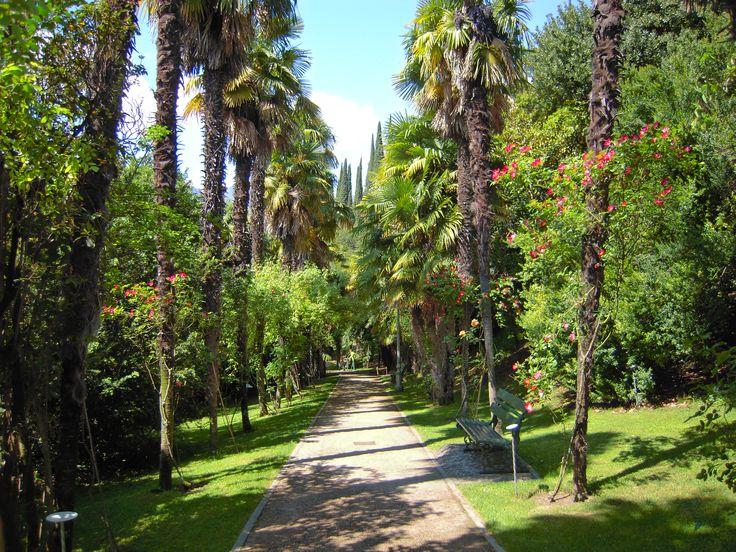 L'arboreto nella villa arciducale