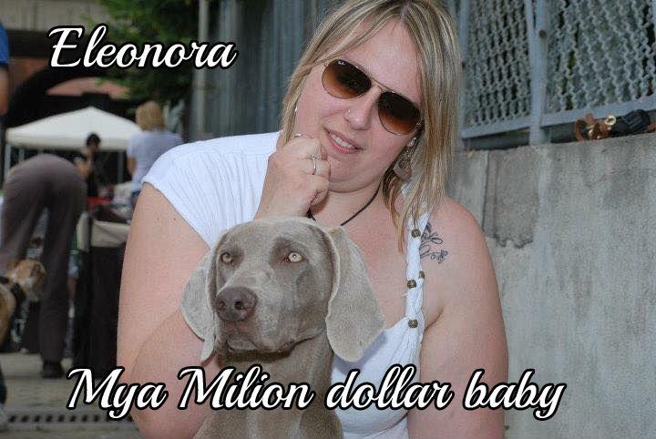 Mya Milion dollar baby ci introduce la sua umana umana Eleonora #MyDogAndMe