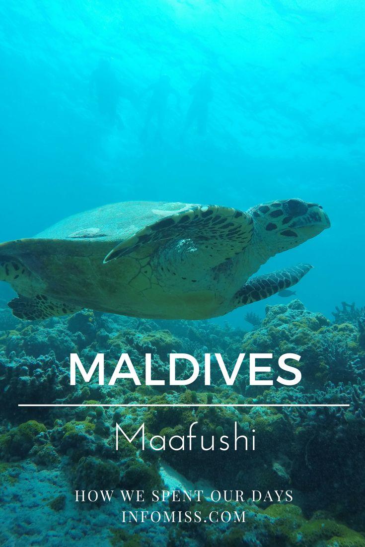 Maafushi Maldives How We Spent Our