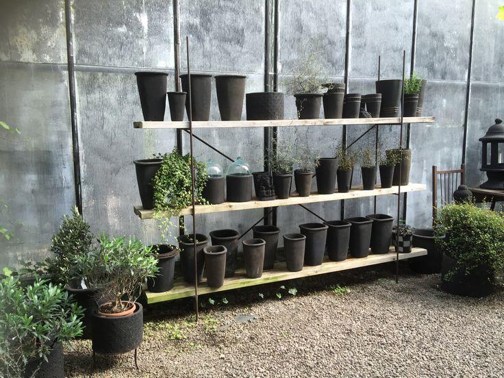 Vellinge plantskola