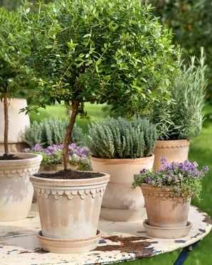 Providence Design loves what Bergs Potter - has put together for the garden.  It's time to start planning.