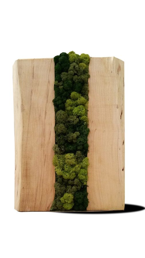 Trunks Pear with stabilized moss by LinfaDecor #design | #wood #trunk #stool #table #tronco #tavolo #sgabello #legno #tronchi
