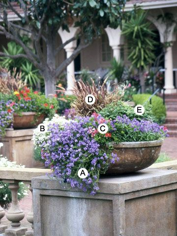 30 Recipes for Beautiful Container Gardens  Use this collection of recipes to create lush, beautiful container gardens to accent your landscape all season long.