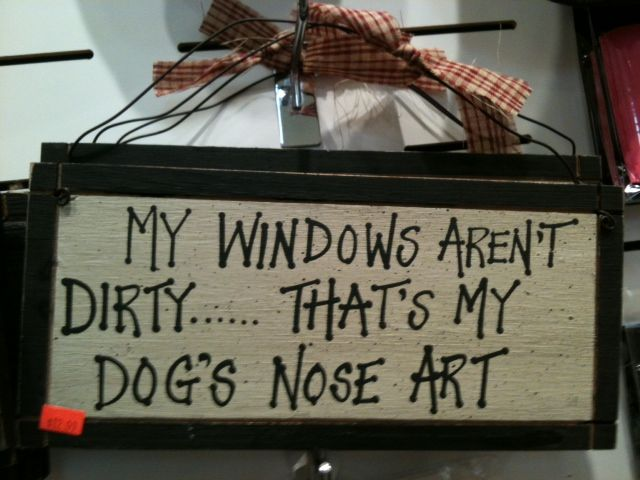 So true! My windows aren't dirty that's my dog's nose art -