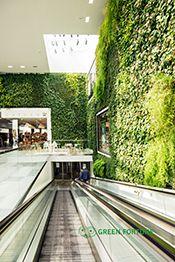 Plantwall, Växtvägg, Green Fortune, Caroli Center, Malmö, Sweden
