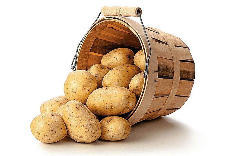 Šťava zo zemiakov je zázračný elixír! 13 dôvodov, prečo ju užívať: Pomôže pri liečbe cukrovky, rakoviny, čriev                                                        http://casprezeny.azet.sk/clanok/115056/trapi-vas-vysoky-tlak-akne-ci-prekysleny-zaludok-stava-zo-zemiakov-je-hotovy-zazrak-takto-ju-uzivajte