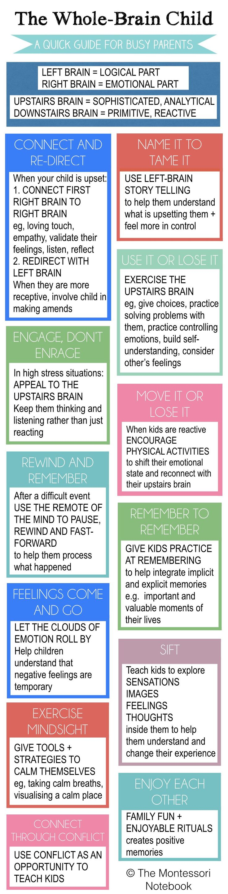 Montessori Infographic Summary of The Whole-Brain Child - an essential infographic to help you put into practice the 12 strategies from Dan Siegel's best seller The Whole-Brain Child