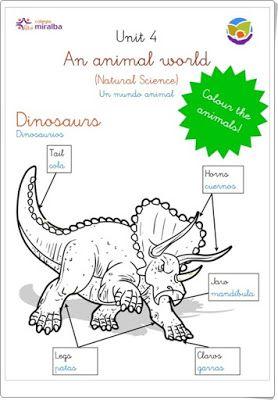 """Unidad 4 de Natural Science de 1º de Primaria: """"Animals"""""""