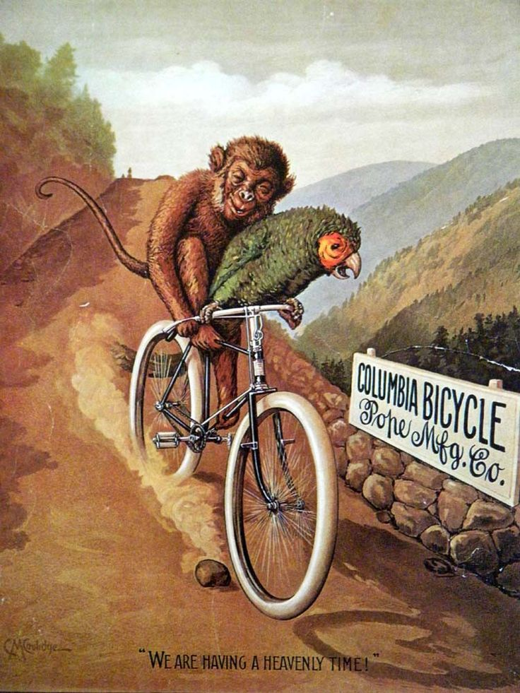 Vintage Bicycle Poster 1895 Columbia Bicycle by BellaMercato, $14.00- I need them. So bad.