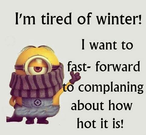 Image result for minions winter humour