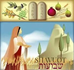 "SHAVUOT ~ The Hebrew meaning of the word Shavuot is ""weeks"", because Shavuot marks the completion of the seven weeks between Passover and Shavuot, which is called the Omer period, during which the people of Israel prepare themselves for the giving of the Torah. a holy nation in eternal covenant with HASHEM, the G-D of Abraham, Izchak & Jaacov. Shavuot marks  the giving of the Torah to Moshe Rabeinu."