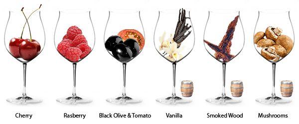 aroma's - rode wijn proefnotitie