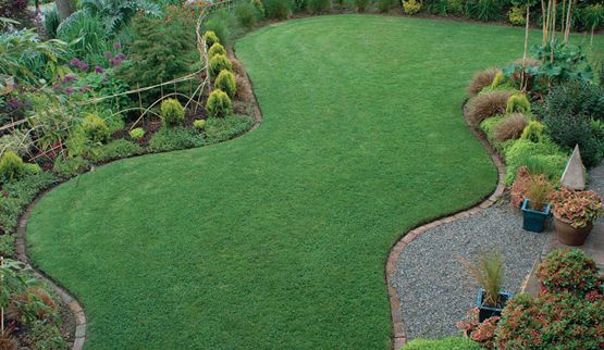 The perfect lawn: edged with brick in a curving shape that lets you mow the perimeter in one pass without backing up and nosing the mower into weird little corners.  Looks so clean and green!