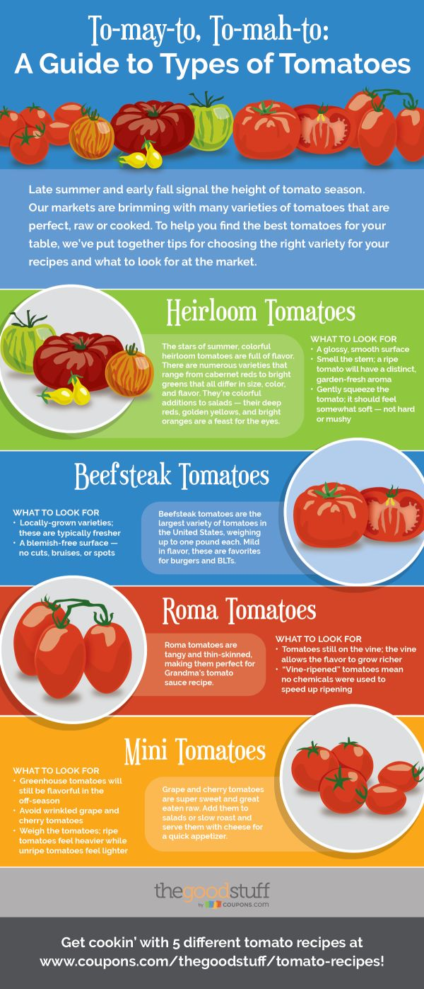 A handy kitchen guide for picking the best tomatoes and recipes to get you started!