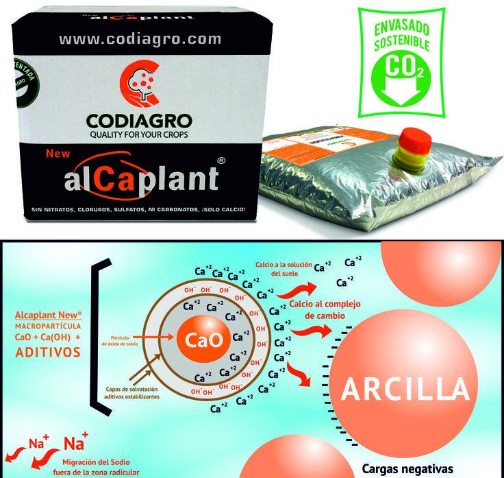 Eficacia de Alcaplant New® como corrector de suelos y aporte de Calcio. Interacción con la solución y los coloides del suelo.