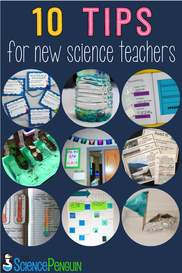 10 Tips for New Elementary Science Teachers