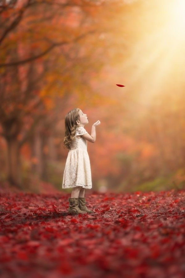 Last warm rays of sunlight and the magical colors of fall bask in their glory as one wisp sends down the perfect gem!