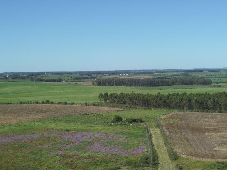 Vista desde la torre del Santuario.