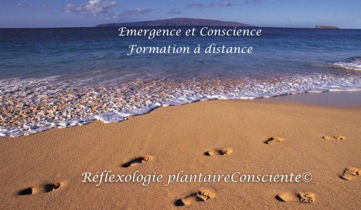 demande - formation - réflexologie -plantaire - consciente