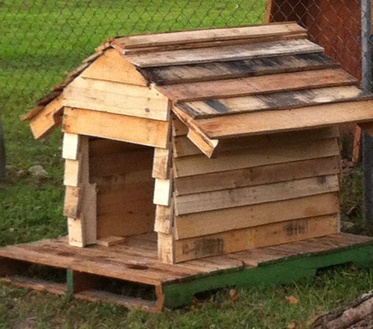 Oltre 25 fantastiche idee su casette per cani su pinterest for Cuccia cane fai da te legno
