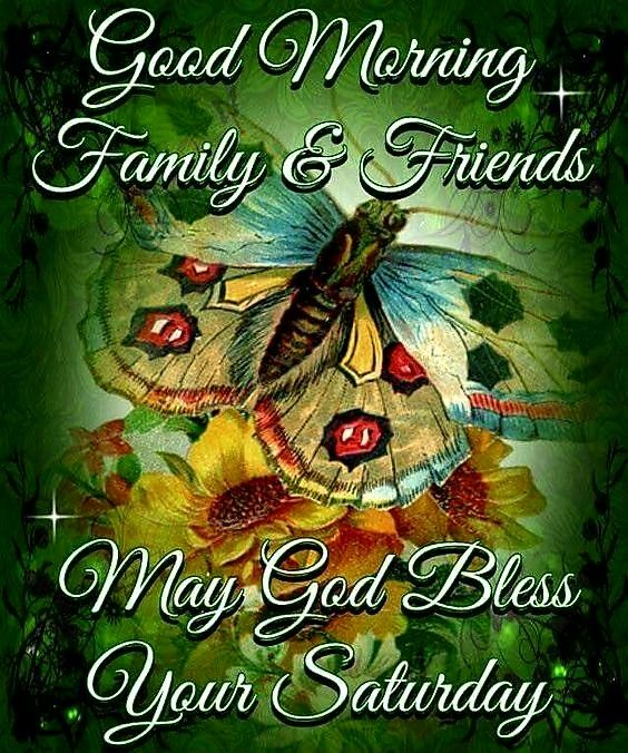 GOOD MORNING FRIENDS AND FAMILY; HAPPY SATURDAY; BUTTERFLYS; FLOWERS; MEME