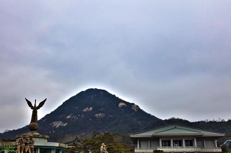 Blue House ~ Jongno District, Seoul, South Korea
