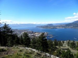 View of Kelowna from the Summit of Knox Mountain by Trish Cenci