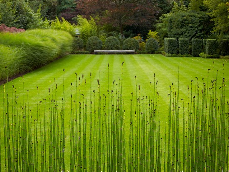 Anthony Paul Is Internationally Renowned For His Innovative And  Contemporary Garden And Landscape Designs.