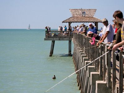 The naples municipal beach fishing pier is one of the for Fishing piers in florida