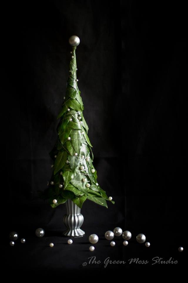 The Green Moss Studio Decoração de interiores