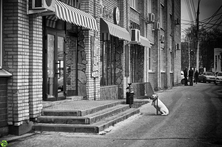 Уличная фотография - 2