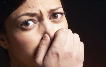 Intolleranza agli odori: provoca alterazioni nell'attività cerebrale - Uno studio svedese ha sottolineato alcune caratteristiche delle intolleranze agli odori, ai profumi, alle fragranze, anche le più gradevoli: fanno insorgere una serie di sintomi, anche fastidiosi, sulle persone sensibili.