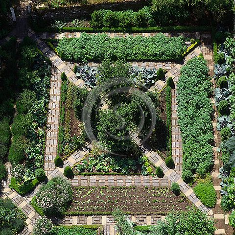 Potager Garden Layout | Overhead aerial view of ornamental vegetable potager garden
