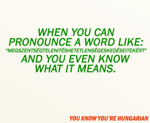 you know you're hungarian when...