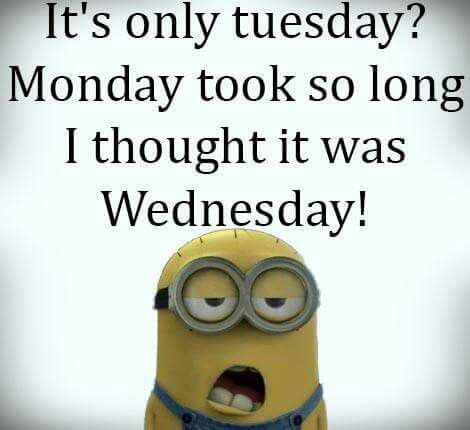 343 best ideas about Tuesday on Pinterest   Graphics ...