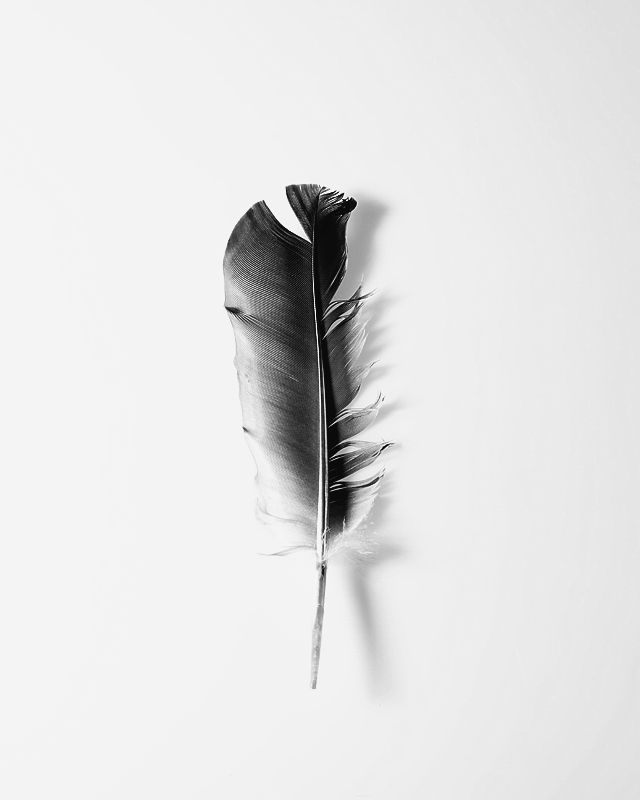 Growing Up/ StephanievanLeeuwen
