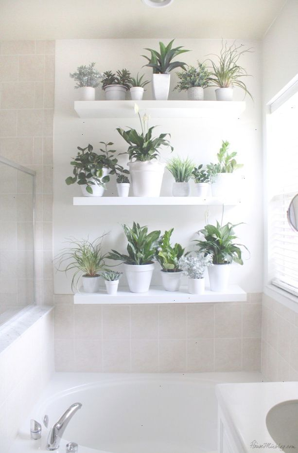 Now That S Trendy Bathroom Wall Decor Target Visit Ikea Lack Shelves Plant Wall Lack Shelf