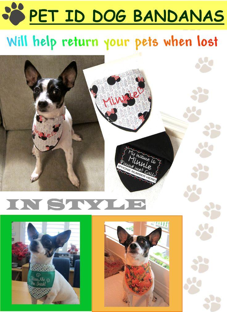 Cele mai bune 25+ de idei despre Lost pets pe Pinterest Rainbow - lost pet poster