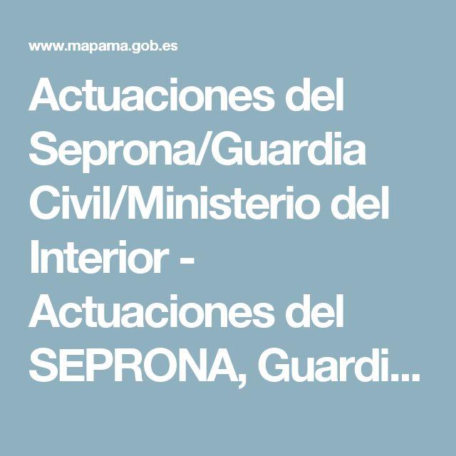 Actuaciones del Seprona/Guardia Civil/Ministerio del Interior - Actuaciones del SEPRONA, Guardia Civil - mapama.es