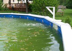 55 best pool images on pinterest yard above ground pool landscaping and decks. Black Bedroom Furniture Sets. Home Design Ideas