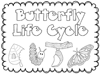 butterfly coloring pages preschool thomas - photo#35