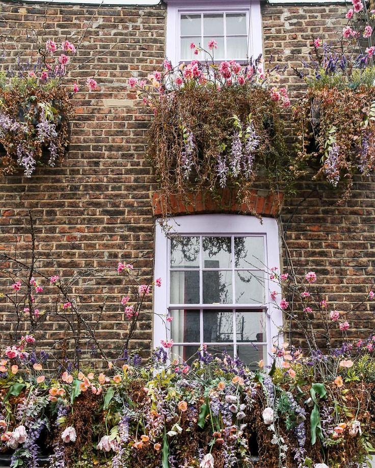 Flower wall in Hampstead, London