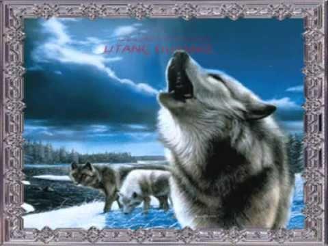 Şaman Kurt Türk Ruhu - Shaman Wolf Turk Spirit - шаманы Волк Тюркские Дух.wmv - YouTube