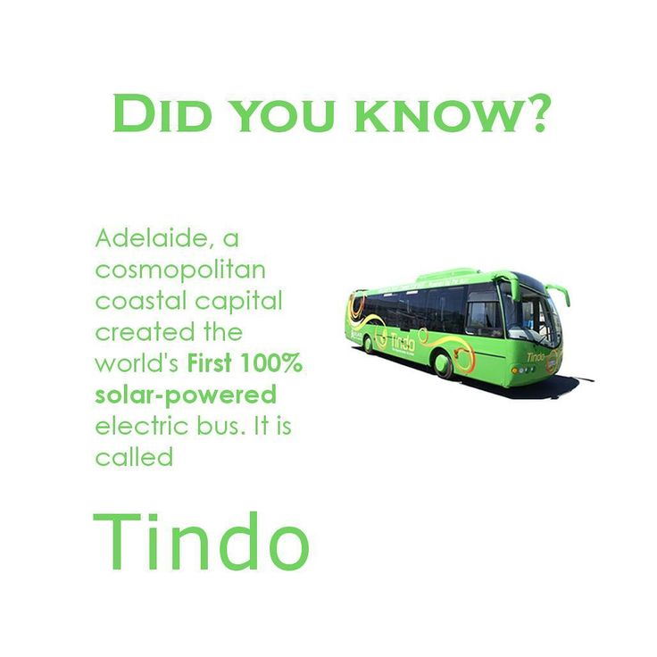 """Named after an Aboriginal word for """"Sun"""" obviously it is powered by the sun the Tindo was designed to be part of the Adelaide Connector Bus service. #guesswhat it is a free service run by the City Council. . . . #followus for more fun solar related pics & facts @angrysolar . . . #solar #solarenergy #instagood #trent #futurehome #forthekids #energy #adelaide #tindo #solarpoweredbus #ottawabusiness #startup #biz #ottawasolar #ontariobusiness #ottawa #home #homeupgrades #facts #igersottawa…"""