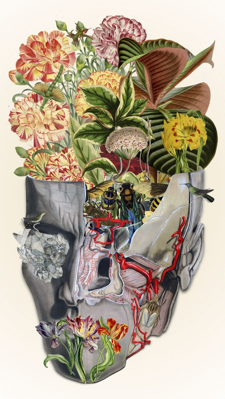 """""""mindfulness"""" anatomical collage art by bedelgeuse"""