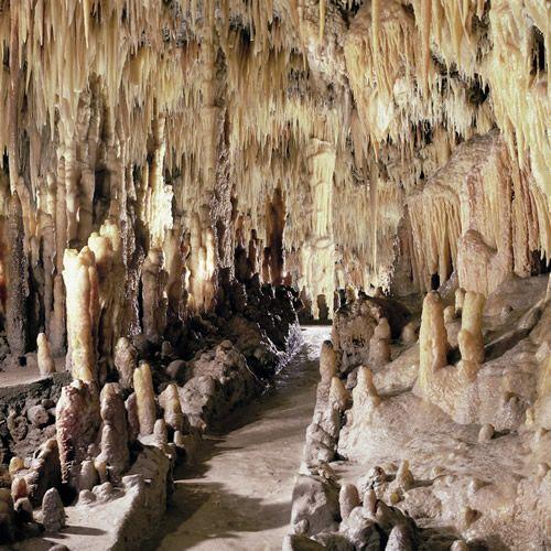 Grotte di Castellana, Bari- Italy Amazing the white cave was my favorite!