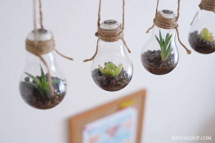 DIYで簡単お洒落な【電球テラリウム】の作り方