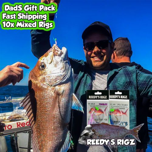 Christmas Gift Idea s For Dad Fishing Tackle Box Snapper Season 2017 by fishingrigs