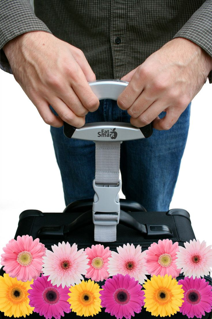 Product spotlight meet the eatsmart precision digital bathroom scale - Precision Voyager Demo With Daisies